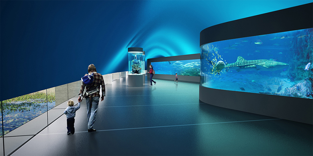aquario-rio3