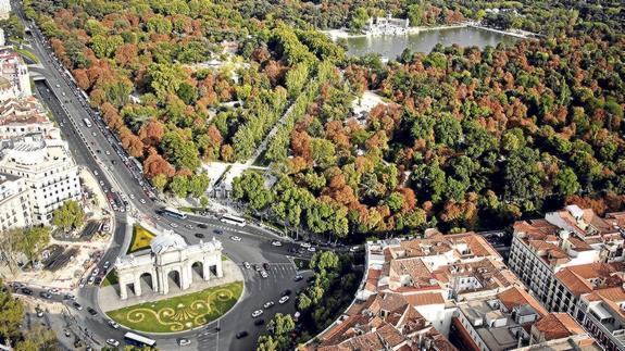 ciudad-arboles-575x323