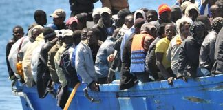 negocio migrantes
