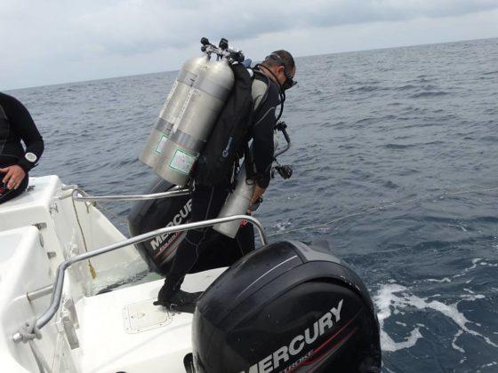 Buzos de la Armada Nacional aportan a la investigación marina 11