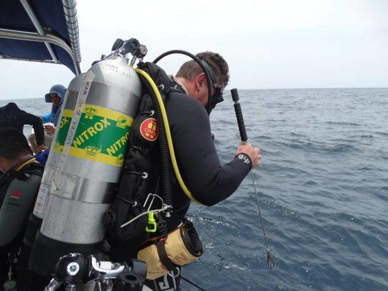 Buzos de la Armada Nacional aportan a la investigación marina 9