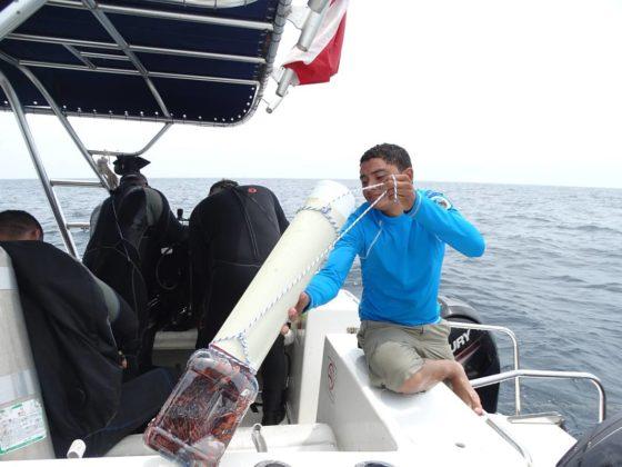 Buzos de la Armada Nacional aportan a la investigación marina 8