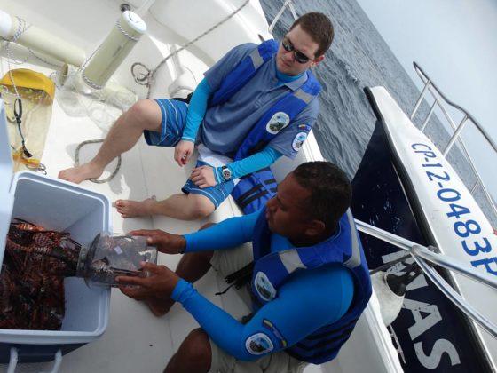 Buzos de la Armada Nacional aportan a la investigación marina 7