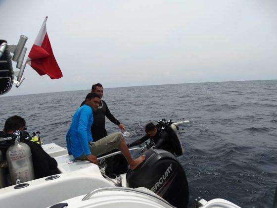 Buzos de la Armada Nacional aportan a la investigación marina 6