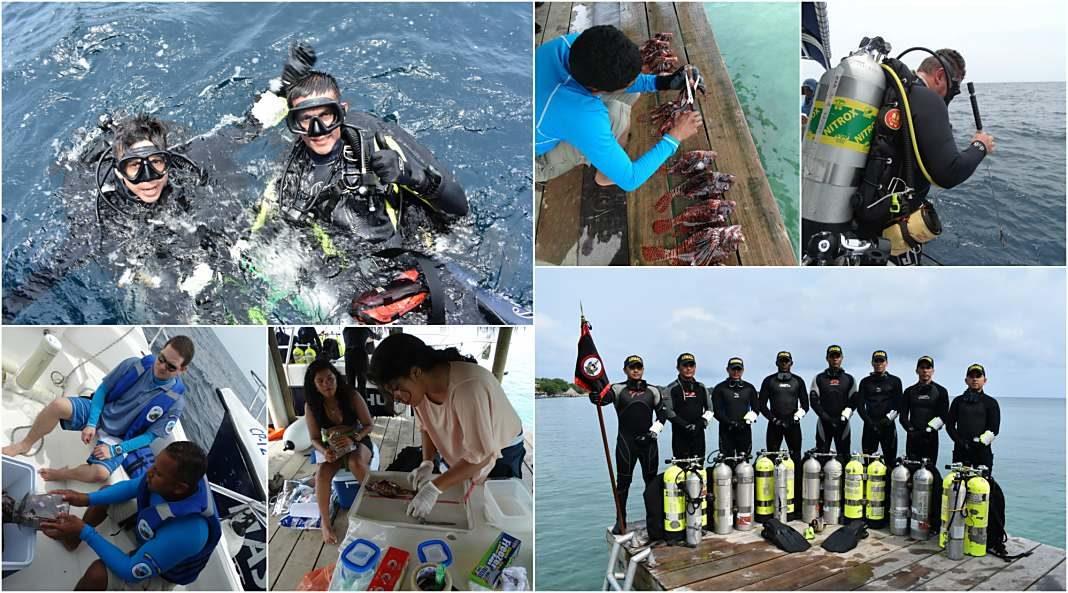 Buzos de la Armada Nacional aportan a la investigación marina
