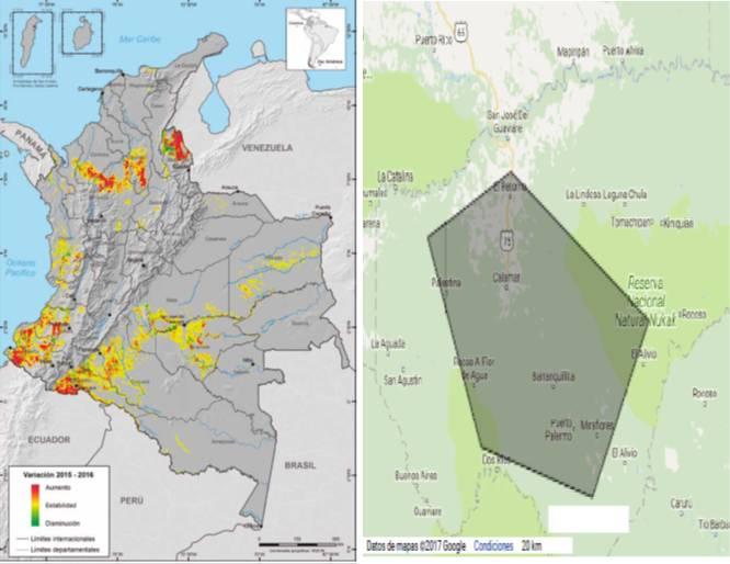 Distribución regional según variación del cultivo de coca