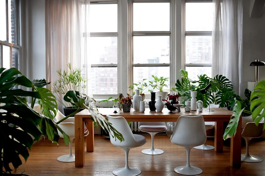 Plantas interior+1