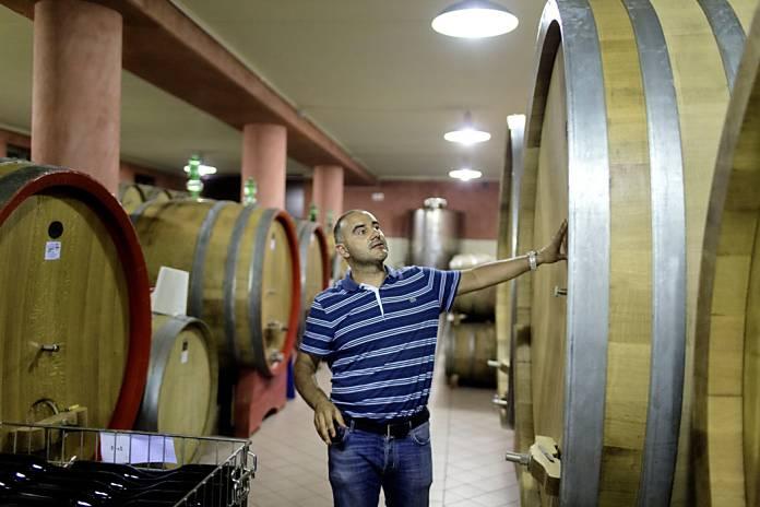 cambio climatico italia vino2
