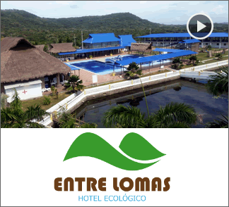Hotel Entre Lomas