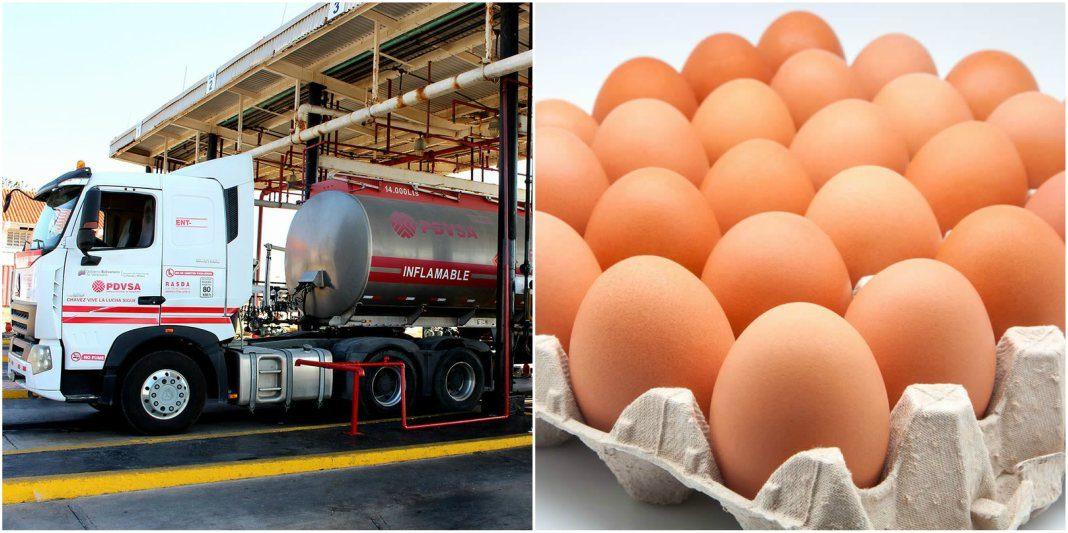 gandola-huevos-precio