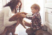 Gato-en-casa niño madre asma