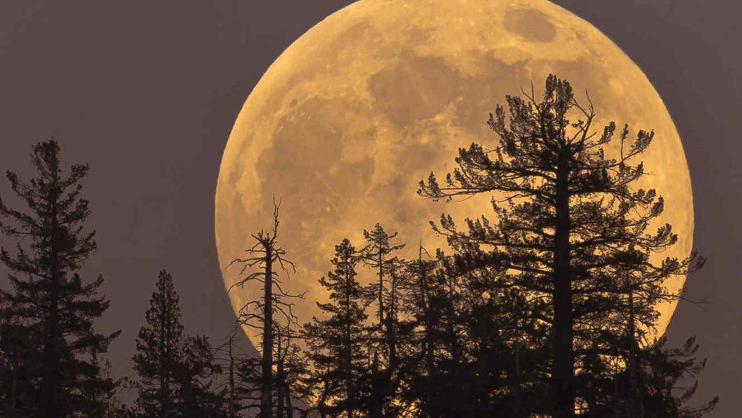 mistica noviembre Luna