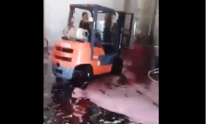 derrame-vino-1