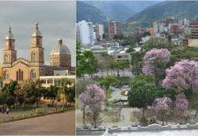 ibague armenia+1