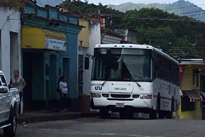 tachiras buses