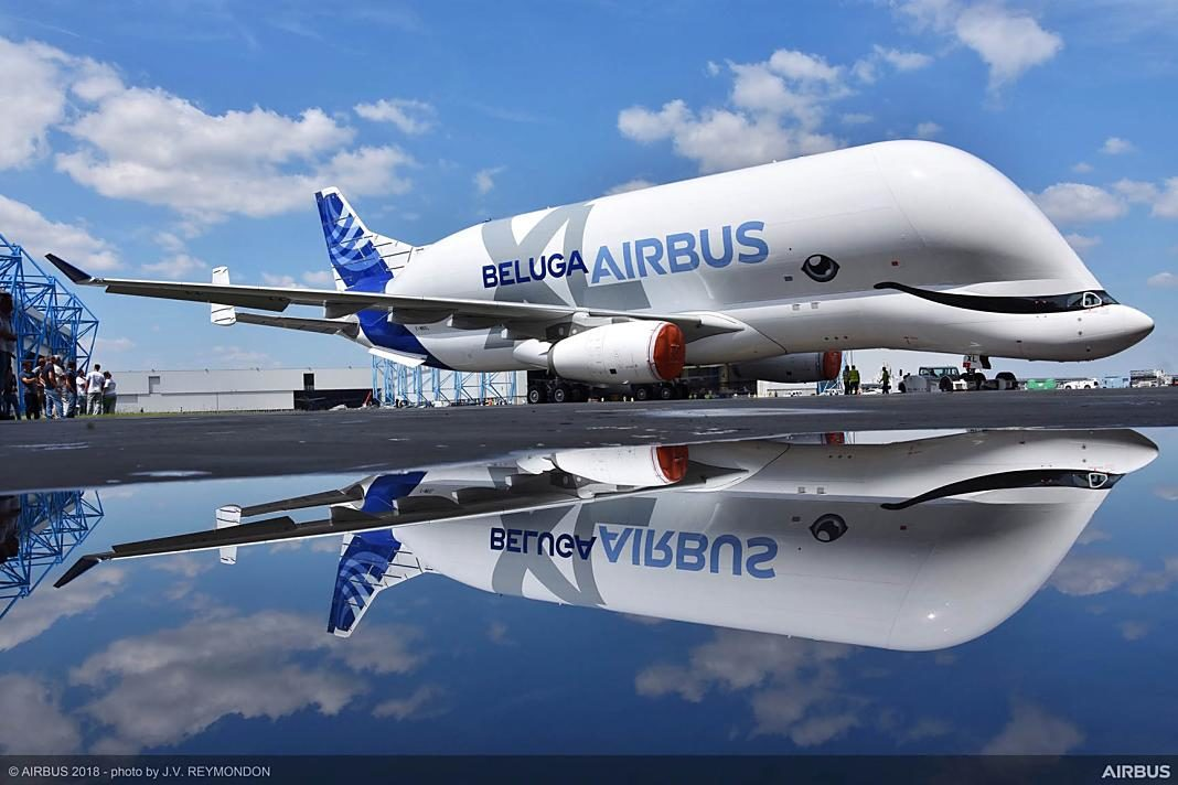 BelugaXL-roll-out-+1