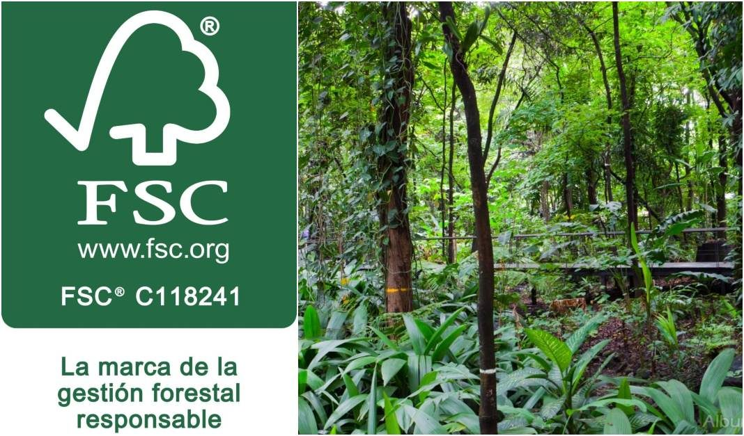 fsc bosque colombiano+1