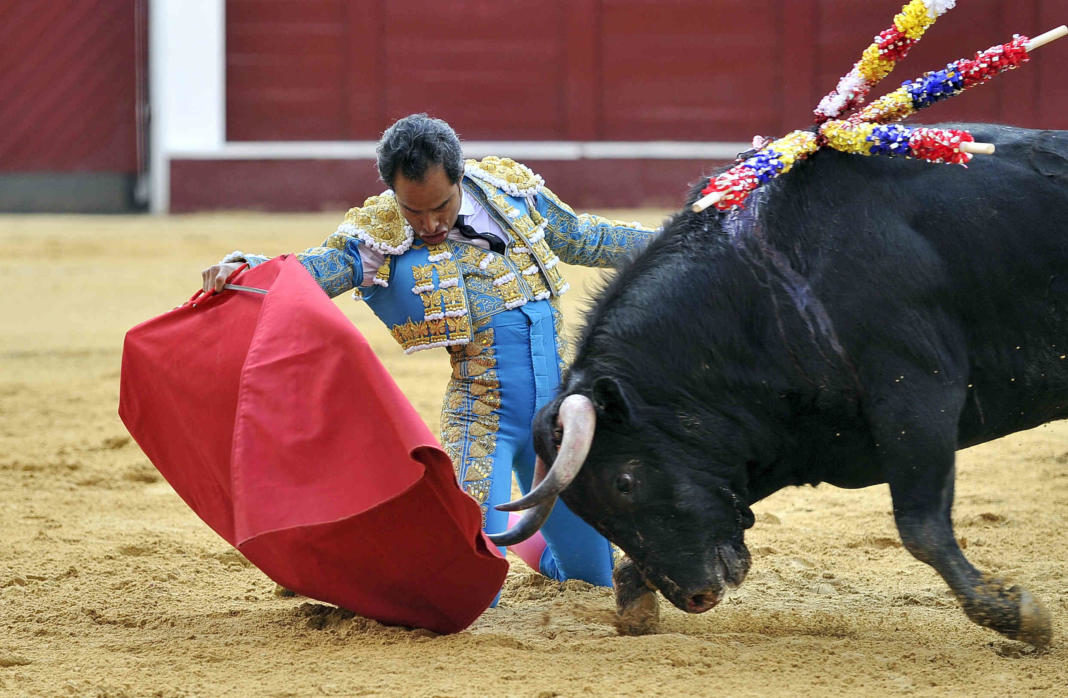 corride de toro