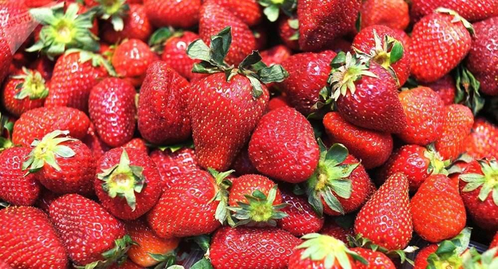 fresas+1