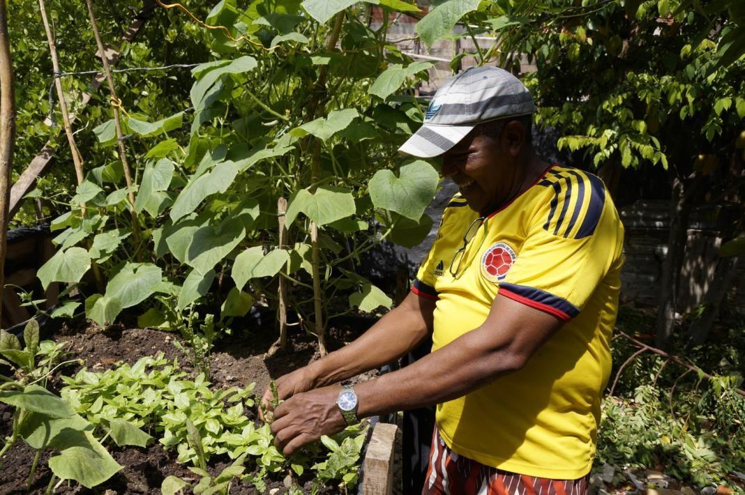 colombianos mayores de 60