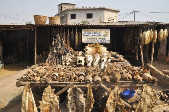 Akodessawa Fetish Market: