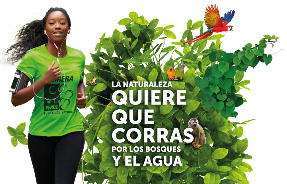 Carrera Verde 2019