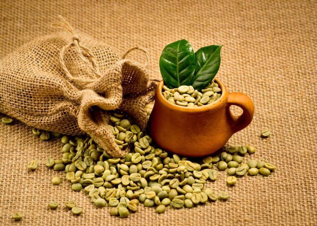 cafe verde+1
