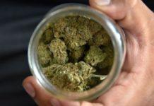 marihuana-maquina+1
