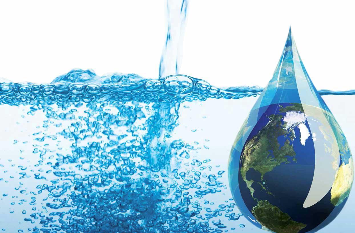 Los frutos del agua peri dico el sol colombia for Como criar peces para consumo humano