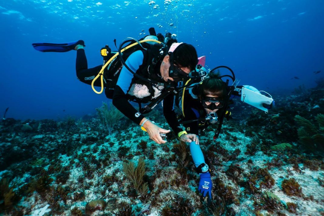 Más allá de los océanos