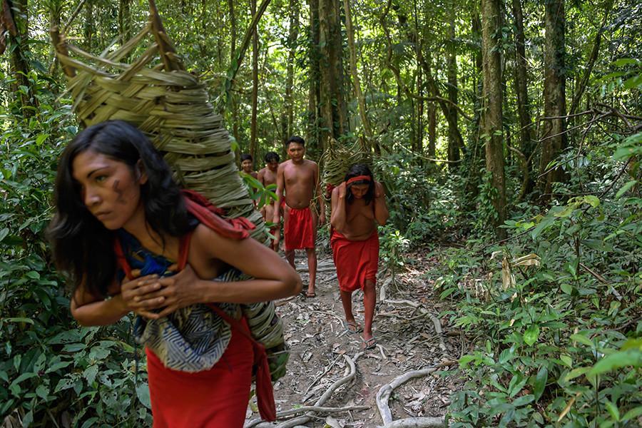 La tribu waiapi