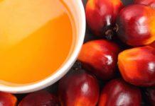 aceite de palma rojo
