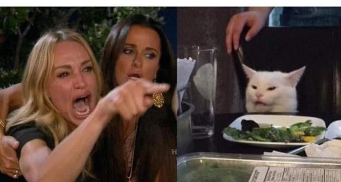 mujer gritando gato