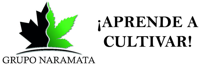 Grupo Naramata
